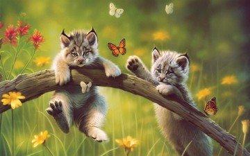 цветы, арт, рисунок, природа, животные, бабочки, котята, бревно, рыси, рысята
