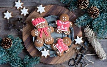 елка, зима, ветки, еда, человечки, ель, фигурки, праздник, шишки, сладкое, тарелка, печенье, выпечка, десерт, встреча нового года, еловая ветка, anna verdina, пряники, елочная