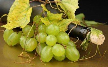 листья, виноград, белый, вино, белое, бутылка, усики, пробка