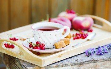 ягода, красная, чашка, персики, чай, сладкое, сахар, смородина, поднос, пирожное, утренний чай