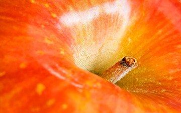 макро, фрукты, плод, яблоко, красное, хвостик