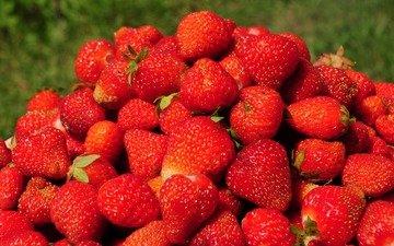 summer, strawberry, red, berries, ripe