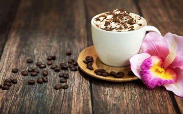 цветок, зерна, кофе, кофейные, шоколад, капучино