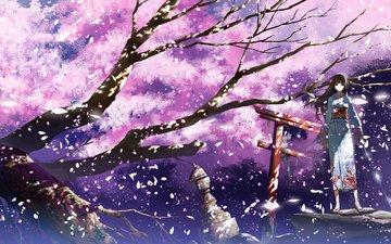 art, trees, girl, petals, anime, sakura, kimono, katana, justminor