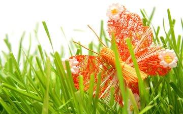 трава, бабочка, декорация, поделки