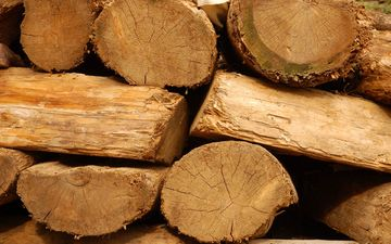 дерево, текстура, доски, дрова, бревна