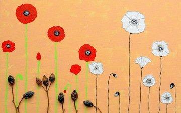 цветы, бутоны, фон, цвет, маки, стебли