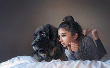 настроение, собака, дети, девочка, ребенок, друзья, на кровати