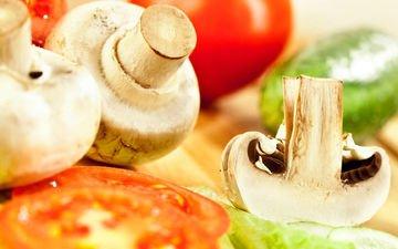 грибы, овощи, помидоры, огурец, шампиньоны
