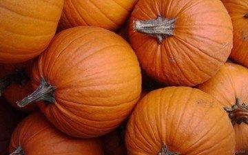 осень, овощи, плоды, оранжевая, тыквы, тыква