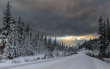 дорога, горы, снег, лес, тучи, ели