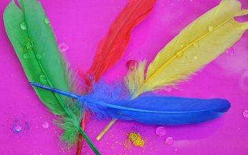 капли, разноцветные, перья, розовый фон, перышки