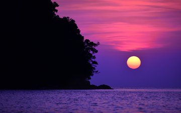 небо, облака, деревья, солнце, закат, море, скала, зарево
