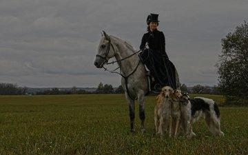 лошадь, природа, костюм, шляпа, собаки, всадница, дама