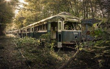природа, поезд, вагоны, лом