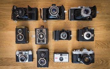 макро, фон, камеры, фотоаппараты