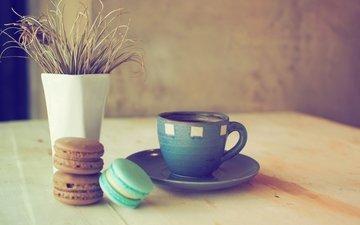 кофе, печенье, десерт, кубок, макарун, сладенько, миндальное, красочная