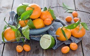 листья, фрукты, лайм, тарелка, мандарины, цитрусы, anna verdina, кумкват