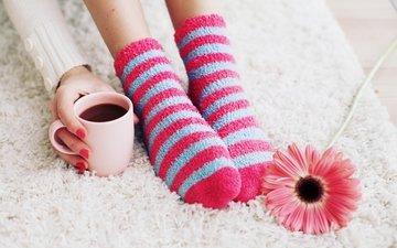 цветок, кофе, ноги, ягоды, чашка, носки, кубок, гербера, гольфах