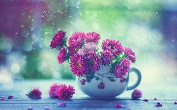 цветы, капли, дождь, кружка, окно, астры