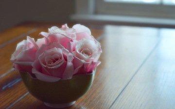 цветок, роза, лепестки, бутон, розовая