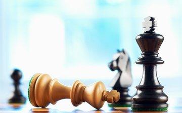 chess, pieces, death, king, bishop