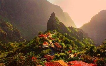 горы, природа, деревня, пальмы