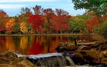 деревья, озеро, парк, осень, штат нью-йорк, belmont lake, belmont lake state park, озеро белмонт, вавилон, нью - йорк