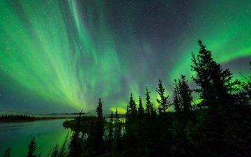 небо, деревья, озеро, северное сияние, силуэты, aurora borealis, северные огни