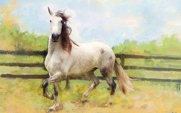 лошадь, картина, поле, графика, ограждение, конь, живопись, белая, светлая, пастельные тона