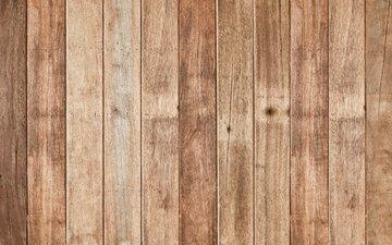 дерево, пол, дерева, ламинат, floating floor