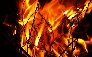ночь, пламя, огонь, костёр