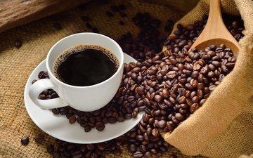 кофе, чашки, водопой, кубок, зерна кофе, кофе в зернах