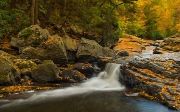 stones, forest, waterfall, autumn, pa, pennsylvania, cascade, meadow run waterslides, ohiopyle state park, state park ohiopyle