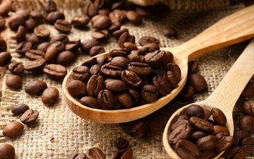 зерна, кофе, ложечка, бобы
