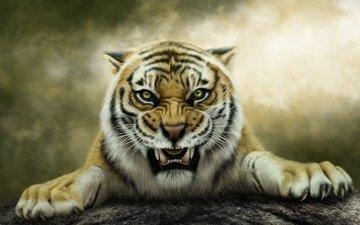 тигр, арт, оскал