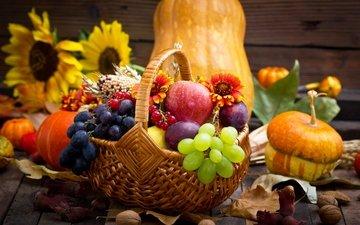 цветы, листья, орехи, виноград, фрукты, яблоки, корзина, подсолнухи, ягоды, яблоко, урожай, овощи, яблок, тыква, натюрморт, цветы, осен, красотуля