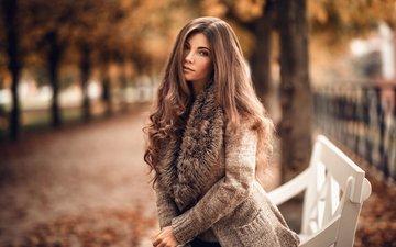 деревья, листья, девушка, парк, взгляд, осень, красавица, модель, кофта, милая, лавочка, аллея, веснушки, шатенка, нежная, шарф, прелесть, длинноволосая, софи, мартин кюн