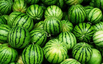 зеленые, арбуз, плоды, арбузы, грин