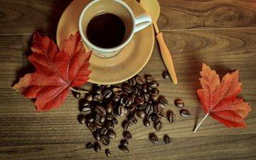 осень, кофе, чашка, книга, кубок, осен, листья, бобы