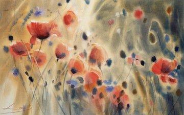 цветы, картина, маки
