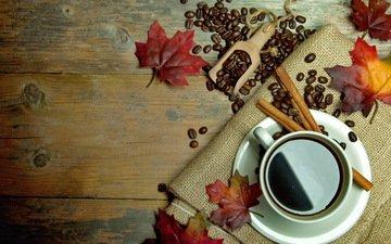 листья, корица, осень, кофе, чашка, кубок, осен, листья, бобы