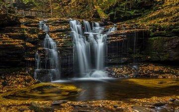 leaves, waterfall, autumn, pa, pennsylvania, cascade, ricketts glen state park