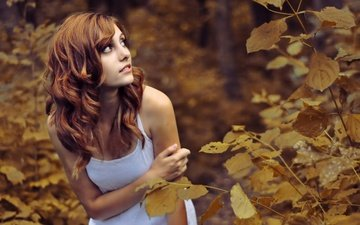 eyes, trees, forest, leaves, girl, look, autumn, the situation, red, chest, lips, face, hands, little, brown, mike, tits, beautiful, cute