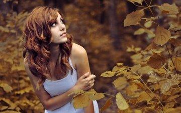 глаза, деревья, лес, листья, девушка, взгляд, осень, ситуация, рыжая, грудь, губы, лицо, руки, маленькая, карие, майка, сиськи, красивая, симпатичная
