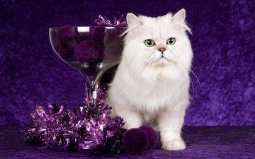новый год, кот, кошка, фиолетовый, шарики, стекло, рождество, белая, чаша, мишура