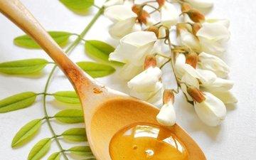 цветы, ветка, ветви, сладости, белые, белая, мед, ложечка, ложка, цветы, акация