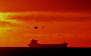 закат, море, корабль, чайки