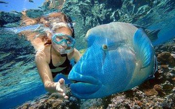 девушка, океан, под водой, рыба