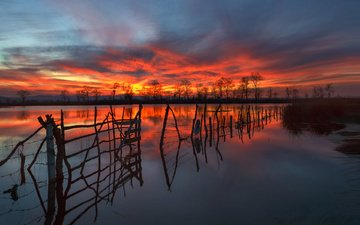 ночь, озеро, природа, закат, отражение, забор, силуэты